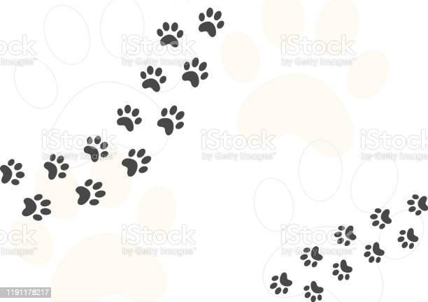 Cat footprint walking cartoon concept design vector trace soft color vector id1191178217?b=1&k=6&m=1191178217&s=612x612&h=vdd6ac2tcb9kai3gfrjkr59sypxxqyg73k0vxyormw8=