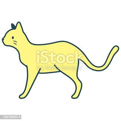 istock Cat Full Body Standing Walking 1337353314