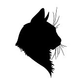 Cat head silhouette. Vector illustration in monochrome style on white background.