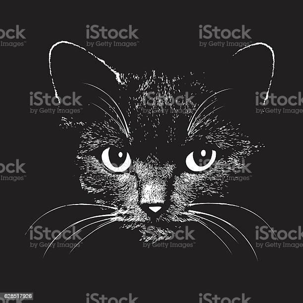Cat head vector animal illustration for tshirt vector id628517926?b=1&k=6&m=628517926&s=612x612&h=f5djx48nnd lz0focgpxixwoeef1ih2hfediml0jx 0=