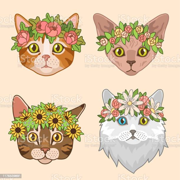 Cat heads with flower crown cute cats in floral wreath funny kitties vector id1176539891?b=1&k=6&m=1176539891&s=612x612&h=w8qnkbi7uofbb97pllhffxk skftfscwyzatjg8nkvq=