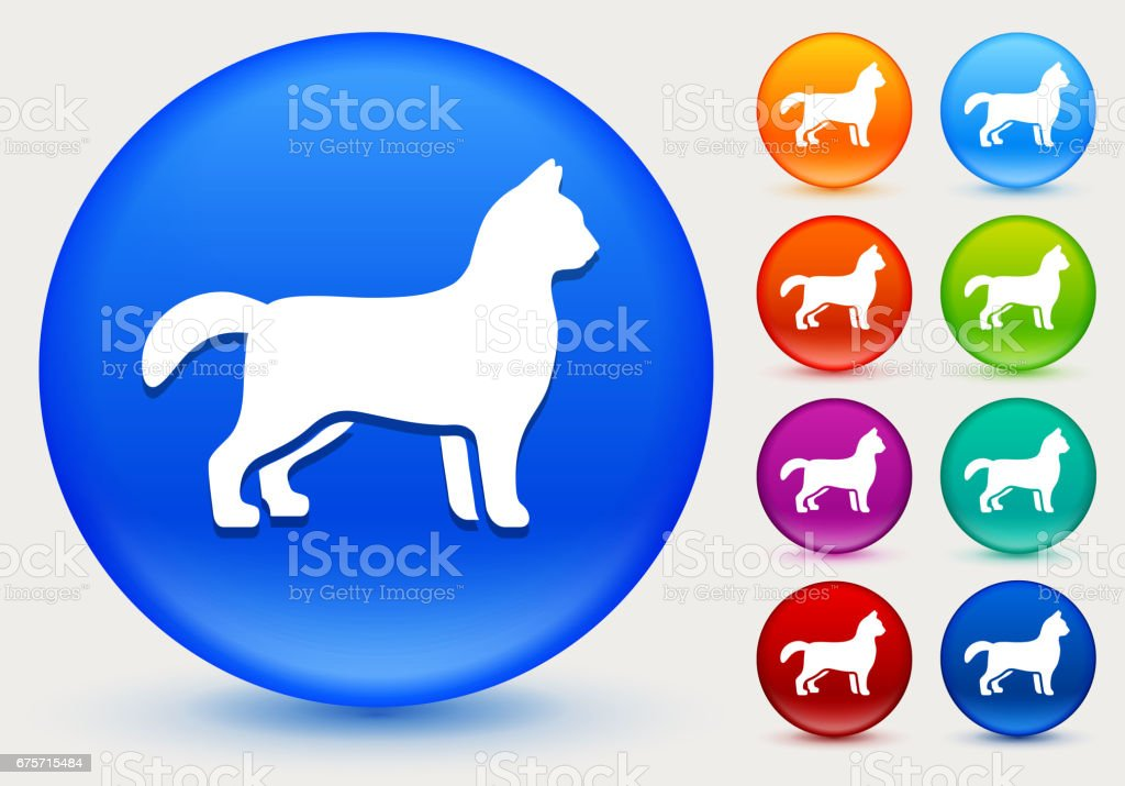 Cat Icon on Shiny Color Circle Buttons royalty-free cat icon on shiny color circle buttons stock vector art & more images of animal