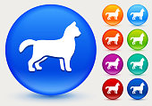 Cat Icon on Shiny Color Circle Buttons. The icon is positioned on a large blue round button. The button is shiny and has a slight glow and shadow. There are 8 alternate color smaller buttons on the right side of the image. These buttons feature the same vector icon as the large button. The colors include orange, red, purple, maroon, green, and indigo variations.