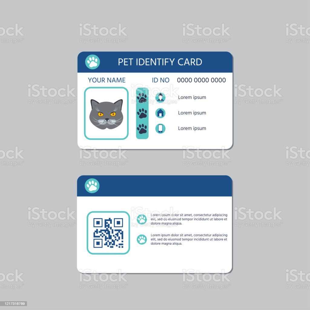 Cat Id Card Design Stock Illustration Download Image Now Istock