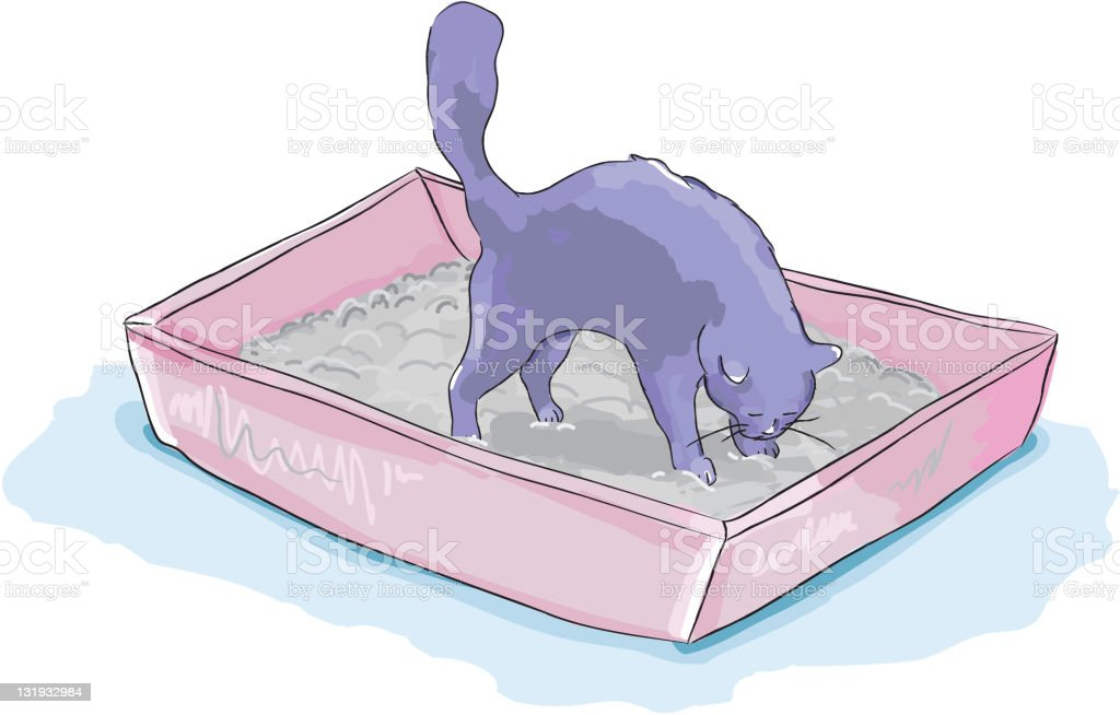 Cat in a litterbox vector art illustration