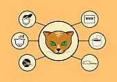 Cat icon set vector. Life of a cat. Redhead cat head illustration