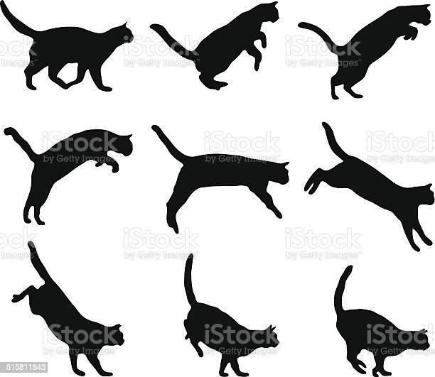 Cat jumping vector id515811843?b=1&k=6&m=515811843&s=612x612&h=ni5aoywns uykhkwnyayneqalgsbc0hu8bycjebiri4=