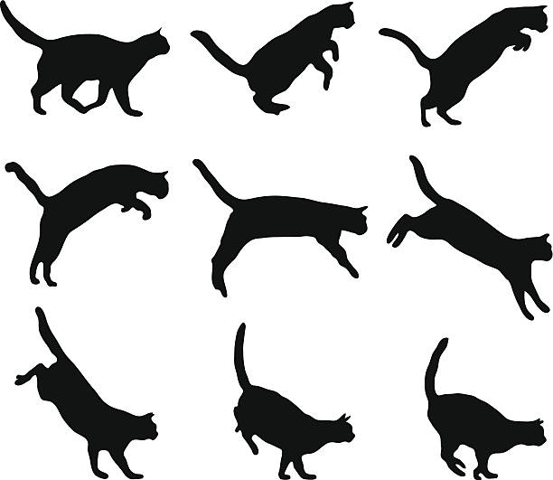 Cat jumping Cat jumping silhouette jumping stock illustrations