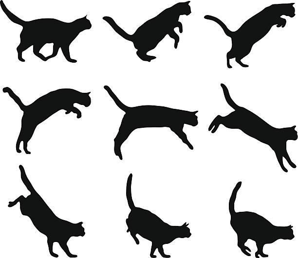 cat jumping - jumping stock illustrations