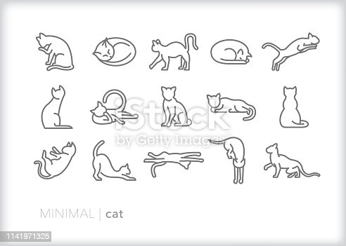 Set of 15 cat line icon of house cats or feral felines sleeping, jumping, walking, cleaning, stretching, lounging and playing