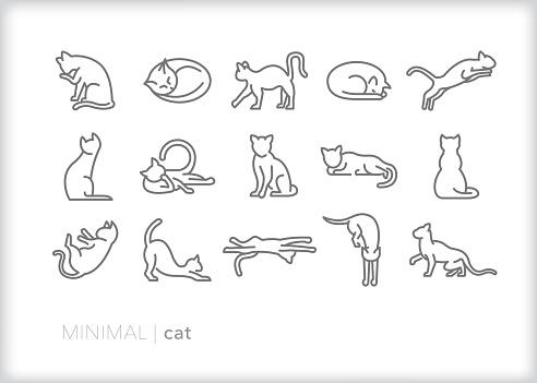 Cat line icons of feline pets, indoor or outdoor, in various actions