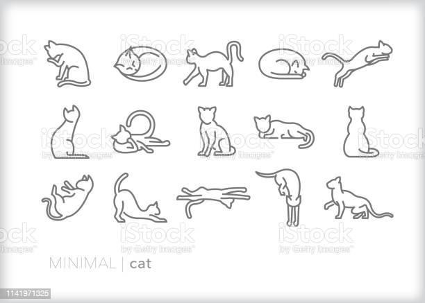 Cat line icons of feline pets indoor or outdoor in various actions vector id1141971325?b=1&k=6&m=1141971325&s=612x612&h=3d dqp yifeix or3eev2lx5kwqxdifhznkizm35ddk=