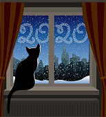 Cat Looking at Winter City. New Year 2020