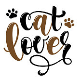 Cat lover handwritten sign. Modern brush lettering. Cute slogan about cat. Phrase for wall décor, poster design, postcard, t-shirt print or mug print. Meow power. Vector isolated illustration