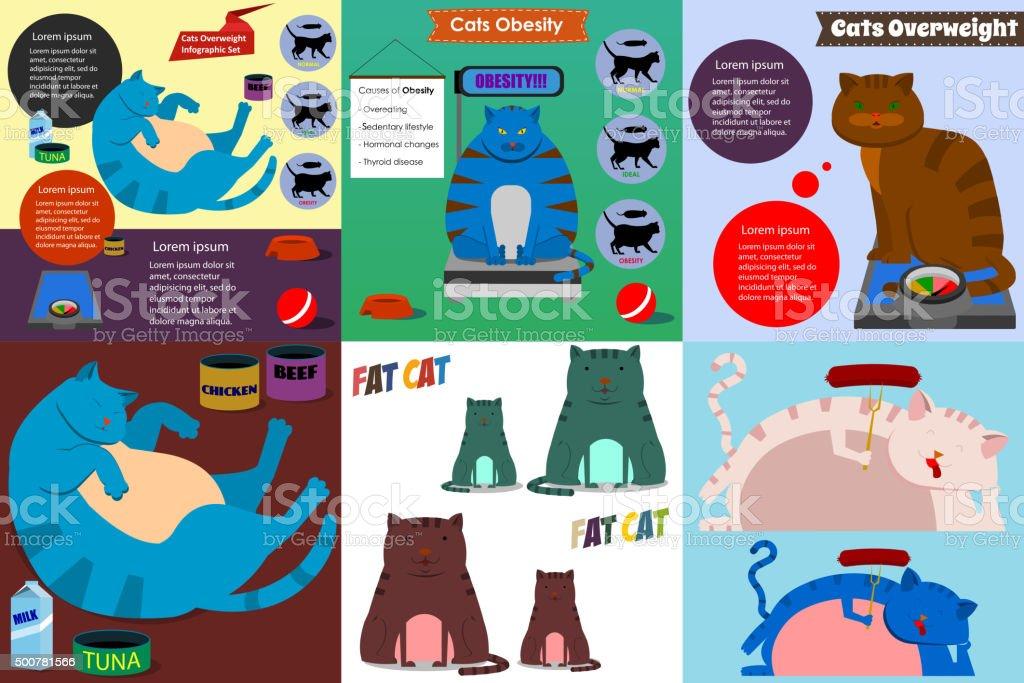 cat obesity set vector art illustration