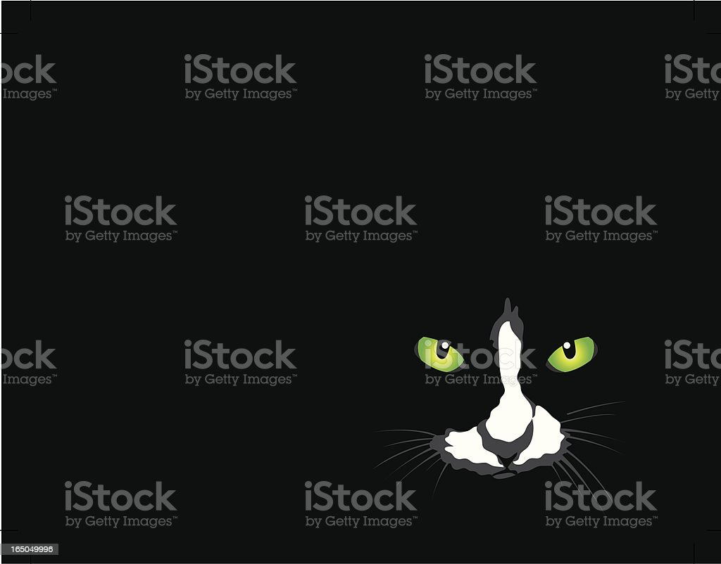 Cat On Black royalty-free cat on black stock vector art & more images of concepts