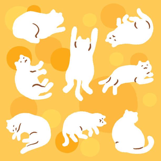 cat on sunny spot vector art illustration