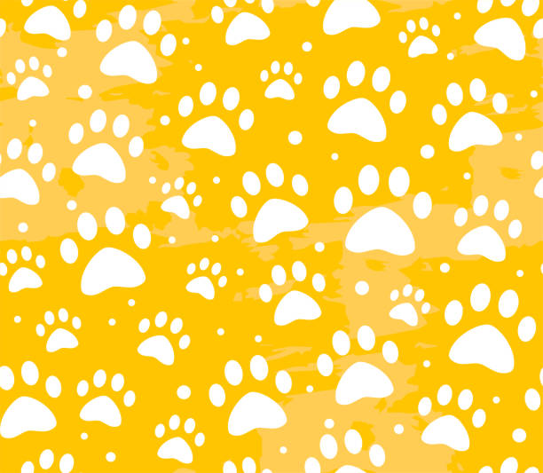 cat or dog paw seamless patterns. backgrounds for pet shop websites and prints. Animal footprint cat or dog paw seamless patterns. backgrounds for pet shop websites and prints. Animal footprint. Cute trendy colors pattern animal shelter stock illustrations