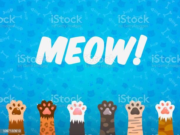 Cat paw flat background cats cartoon pet paws print kitten texture vector id1097132610?b=1&k=6&m=1097132610&s=612x612&h=fj6yi7d mukoovnqgcheg16oecwblu1fw1qqpw6hdzu=