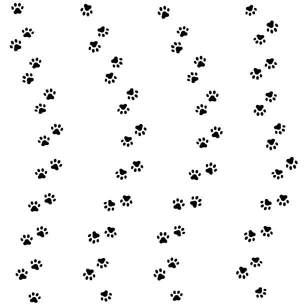 貓的爪子的軌道。無縫的爪子足跡的動物圖案。向量 - 版畫 幅插畫檔、美工圖案、卡通及圖標