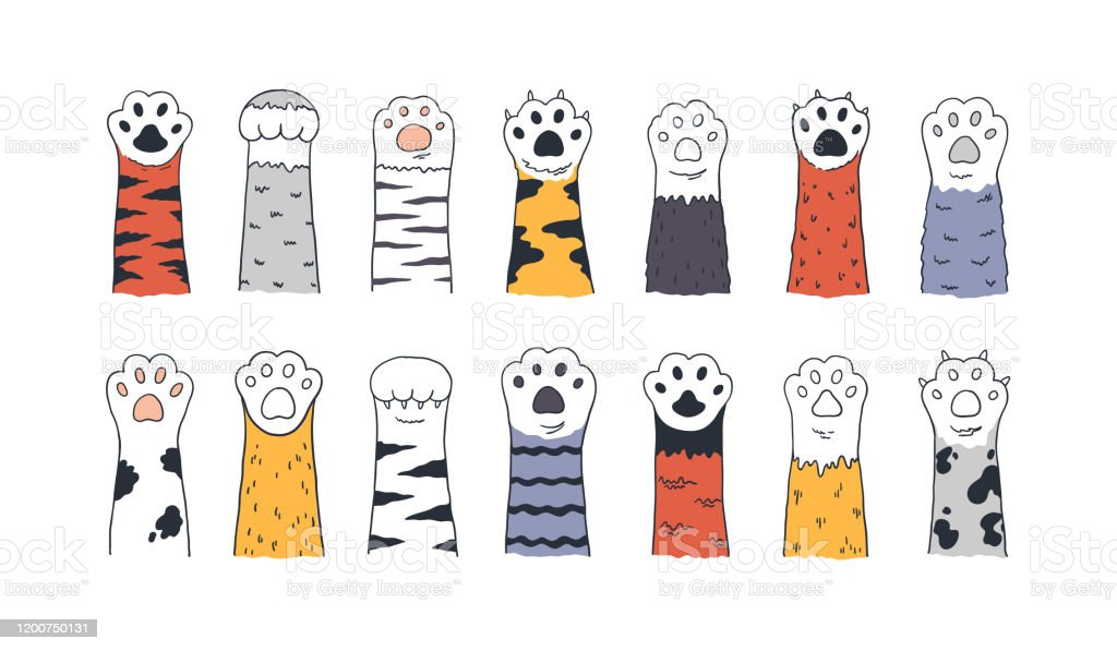 Cat Paws Doodle Animal Foot Cute Cartoon Kitten And Puppy Paws