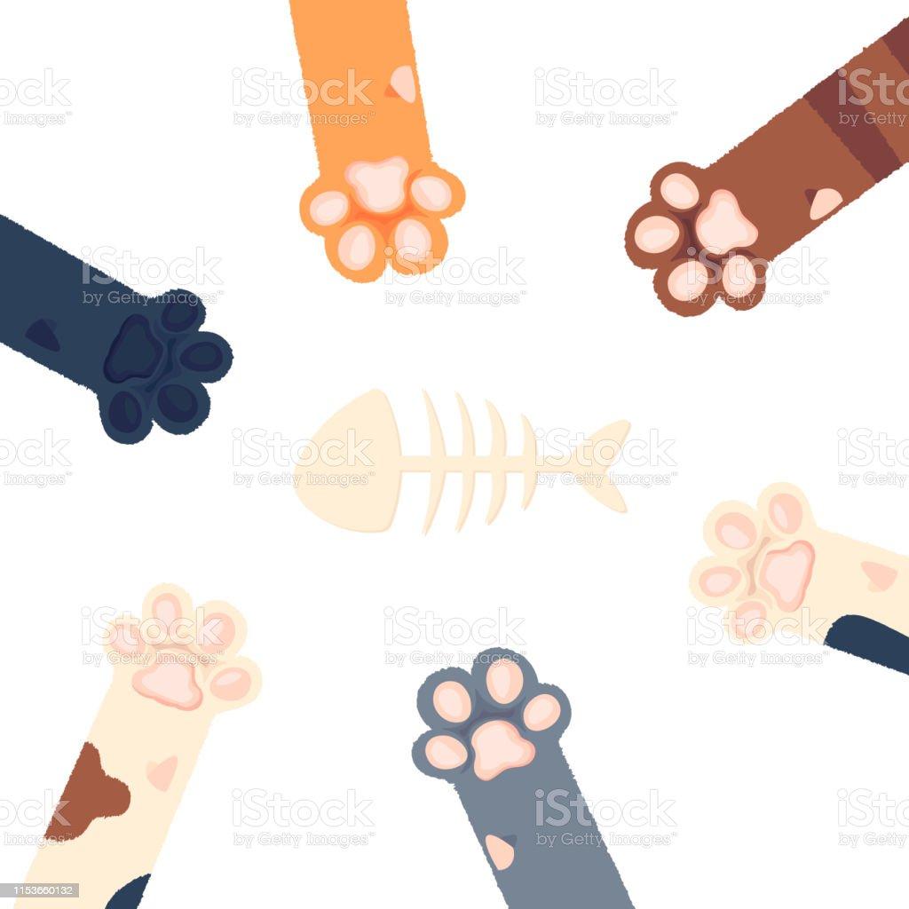 cat paws wallpaper, legs, dog paw, cat background, kitten flat...