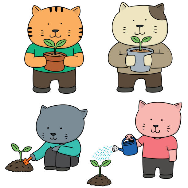 cat planting tree - square foot garden stock illustrations, clip art, cartoons, & icons