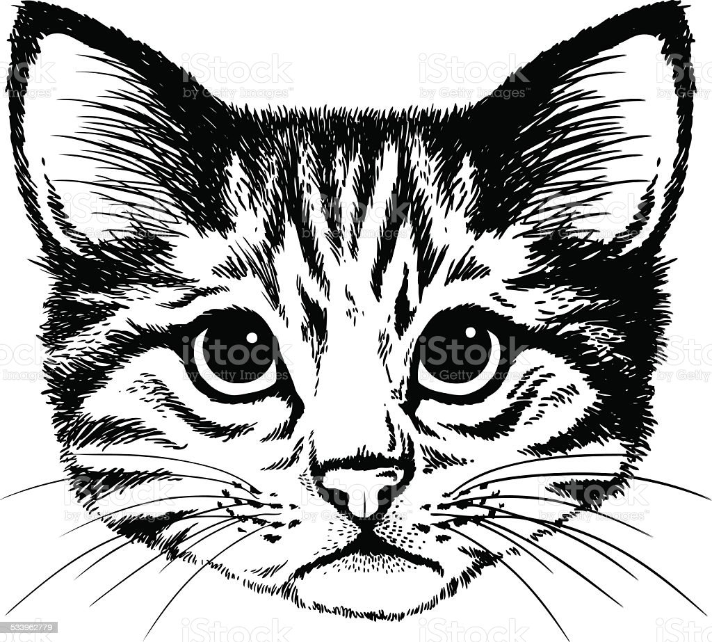 Cat portrait vector art illustration