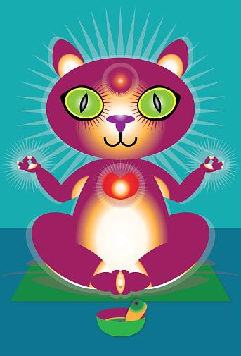 cat practicing yoga and meditation
