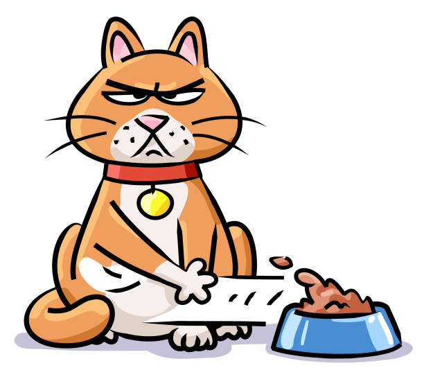 1 336 Hungry Cat Illustrations Clip Art Istock