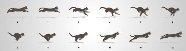 Cat Run cycle animation Sequence Cat Running animation frames and sprite sheet,Silhouette sequential series stock illustrations