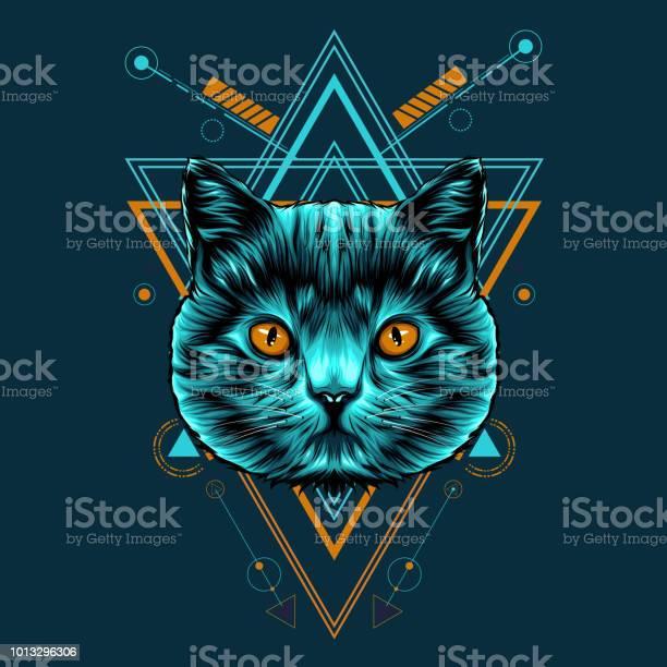 Cat sacred geometry illustration vector id1013296306?b=1&k=6&m=1013296306&s=612x612&h= kjydambw4s vy5gdvmm04ce4dp 5 olr b u74rbhe=
