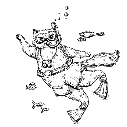Cat scuba diver dressed in a mask for diving, swimming trunks, flippers and with camera.