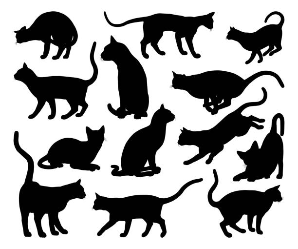 cat silhouette pet animals set - cat stock illustrations