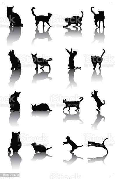 Cat silhouette vector id165720470?b=1&k=6&m=165720470&s=612x612&h=fssmv7ap rwa55i4ydmunygoecseu u5l99b f55pci=