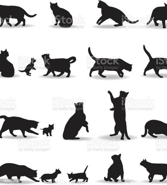 Cat silhouette vector id165920600?b=1&k=6&m=165920600&s=612x612&h=clsorfqem8lfp85r97iz0pzu20xa2rpd9wq 3lnb6uo=