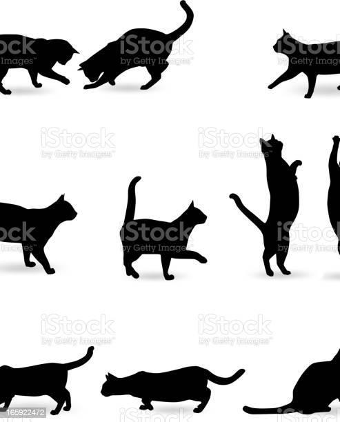 Cat silhouette vector id165922472?b=1&k=6&m=165922472&s=612x612&h=sngl19bd4fxtl4 us65hcqfinr umjuoodfymzpnexs=