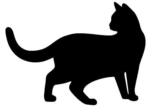 cat, silhouette