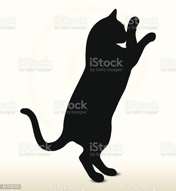 Cat silhouette vector id517252131?b=1&k=6&m=517252131&s=612x612&h= hnd 0okz7qhvgqw1pegx3 drlynjj3 pktvtfsl2u4=