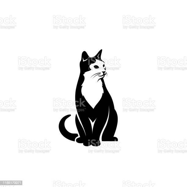 Cat sitting down vector illustration vector id1155170071?b=1&k=6&m=1155170071&s=612x612&h=rm3floc89jaoxyikzexxwejrgg jyoyfzbflqph zhs=