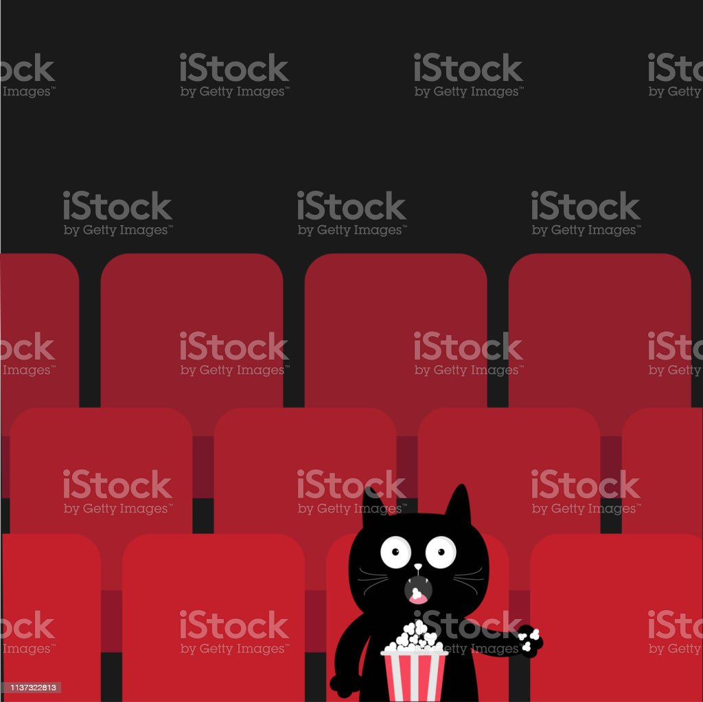 Cat Sitting In Movie Theater Eating Popcorn Cute Cartoon Character Film Show Cinema Background Viewer Kitten Watching Movie Red Seats Hall Dark Background Flat Design Stock Illustration Download Image Now Istock