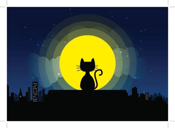 Cat sitting on a roof background of the moonlight Cat sitting on a roof background of the moonlight.  All in a single layer. Vector illustration. Black cat on roof with moon town and starry night in the background. spooky halloween town stock illustrations
