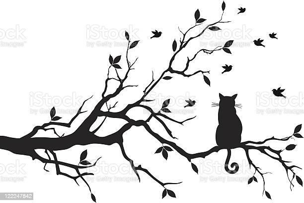 Cat sitting on a tree branch vector id122247842?b=1&k=6&m=122247842&s=612x612&h=3yb0eadnybnuw3jzwpimnzspbesbngeyy2e3 8hw2hg=