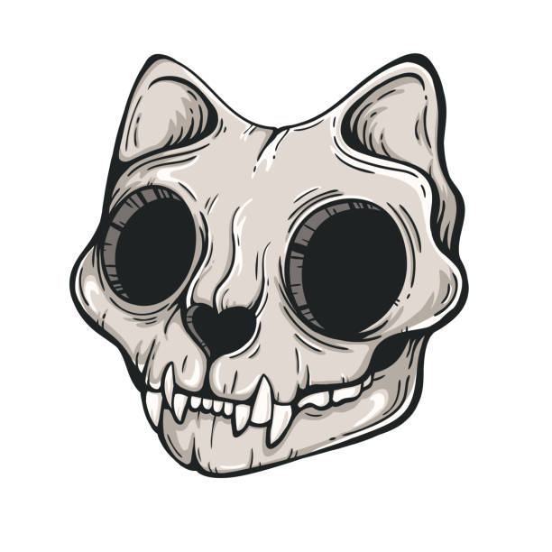 Royalty Free Cat Skeleton Clip Art, Vector Images ...