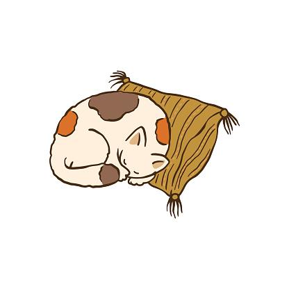 Cat sleeping on pillow - cartoon pet animal drawing, vector illustration