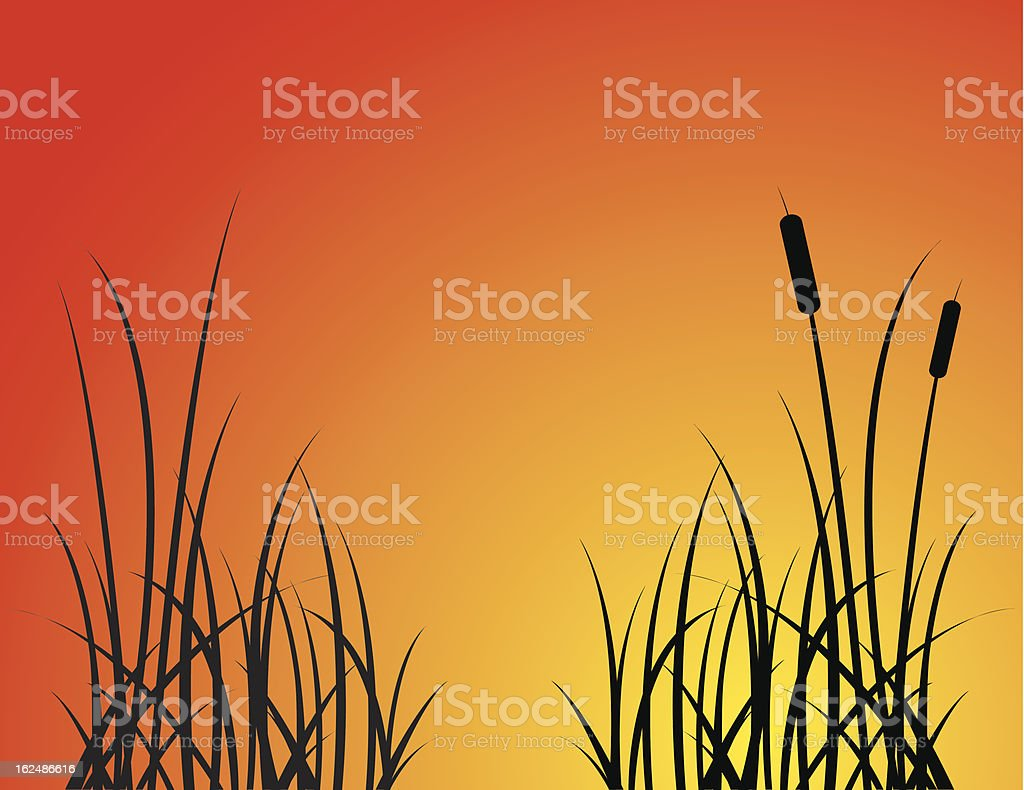 Cat Tail Silhouettes royalty-free stock vector art