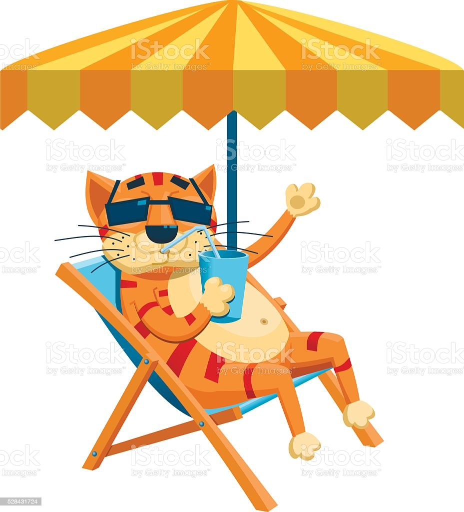 Cat taking sunbath vector art illustration