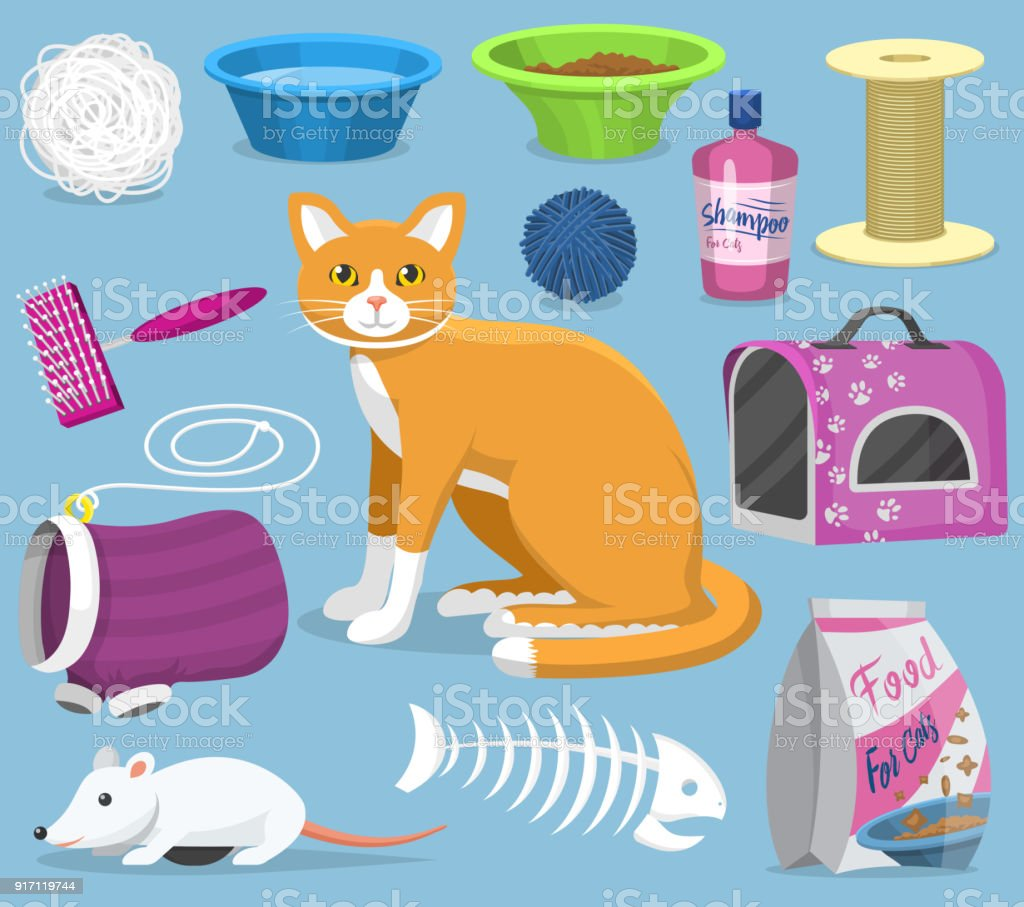 Cat Toys Vector Pets Accessories For Pussycats Care Or Playing Kitten Bowl And Animal Grooming Tools