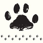 a traced cat foot track as black silhouette. This editable vector file contains eps8, aiCS3, ai10, pdf and 300dpi jpeg formats.