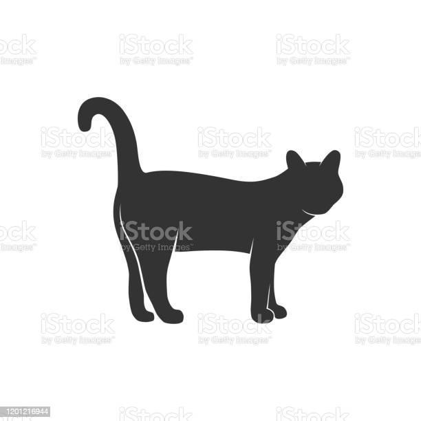Cat vector id1201216944?b=1&k=6&m=1201216944&s=612x612&h=n4h2h2orena357izkdxw wnmt ks0mnuws 77skvecs=